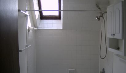 183 Williams Street Apartment 301  skylight shower