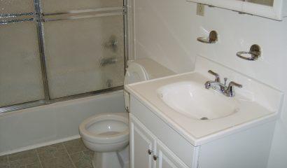 183 Williams Street Apartment 202 bathroom